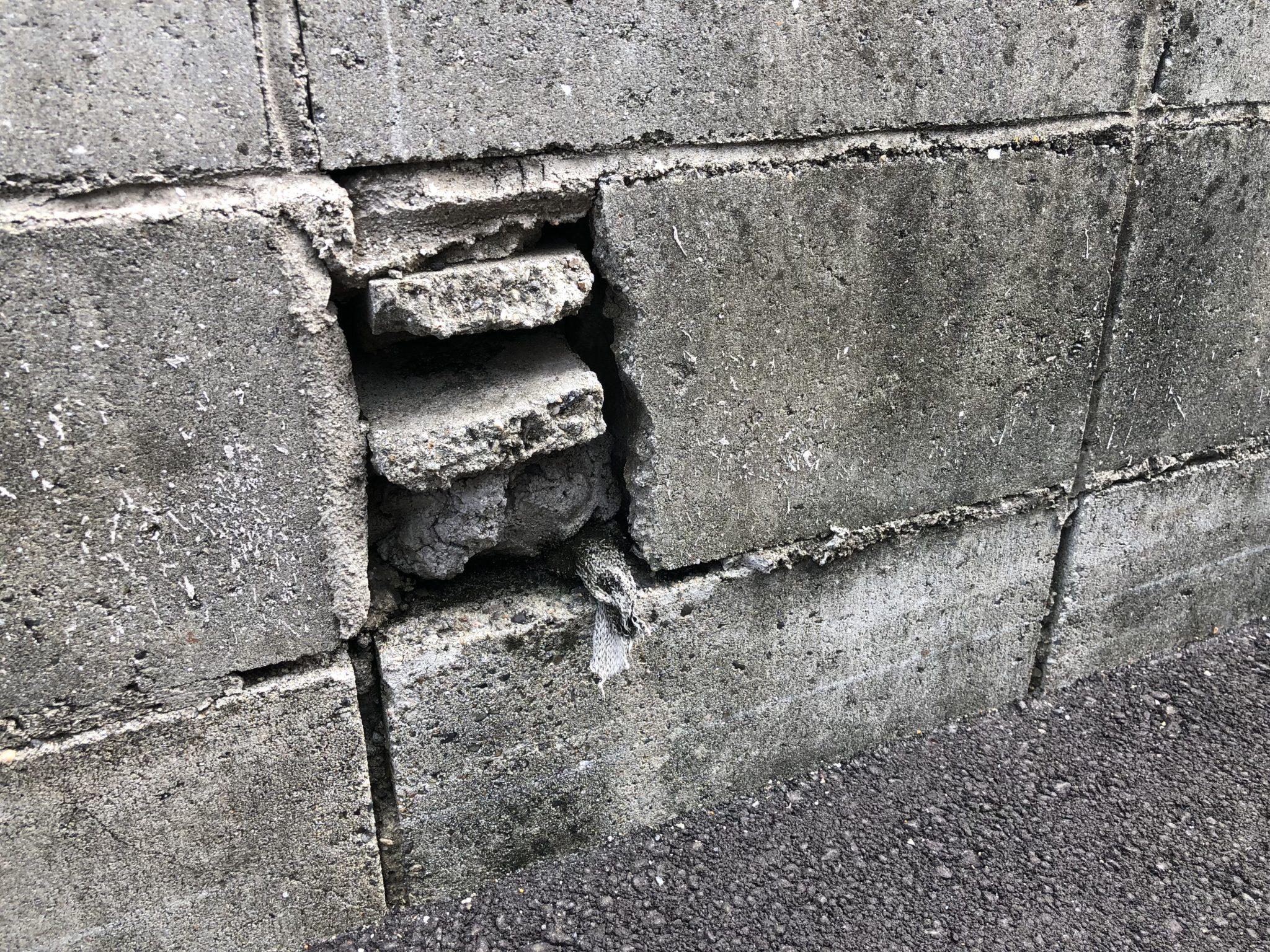 【骨なし塀】ブロック塀マニアックス 4